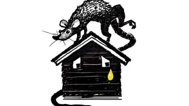mousepee