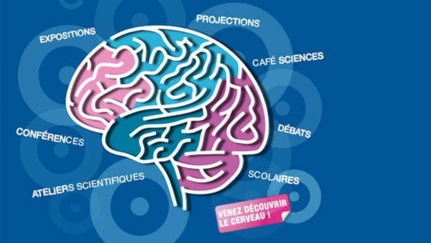 France Brain Week