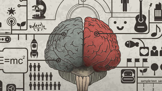 brainism-brain