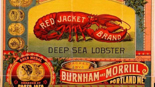 red-jacket-lobster