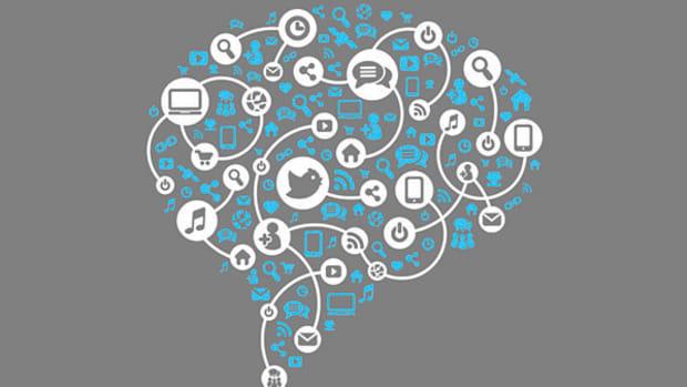 social-brain