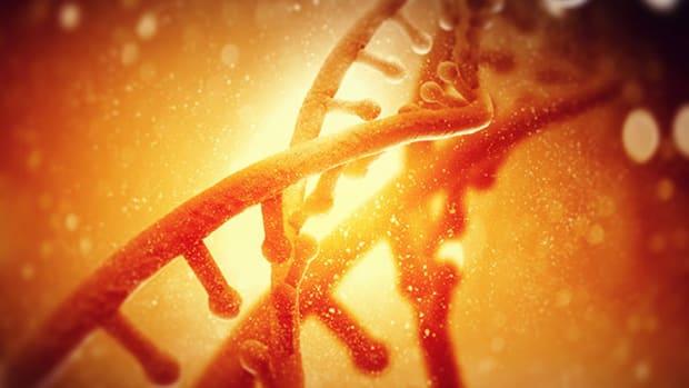orange-genome