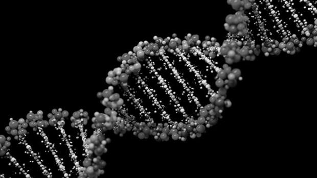 black-white-genes