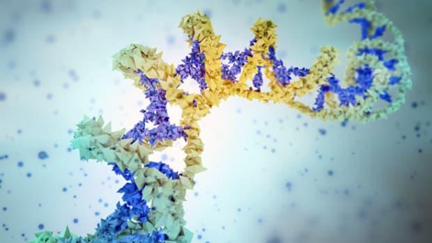 genetic-material