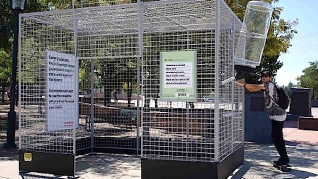 lab-rat-cage