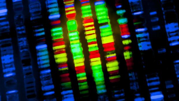 12201.we-can-genetically-edit-out-hiv-should-we.6b5162701b384c0d868a43276fdafab3.jpg