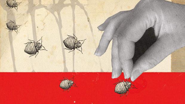bugs-prospector.gif