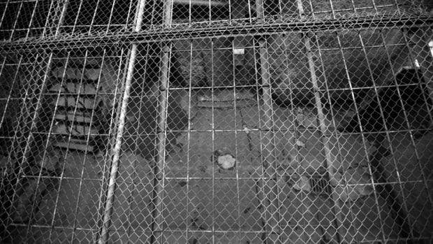 shutterstock_254324011.jpg