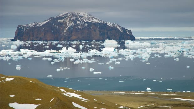 Ice retreats from the shore of Dundee Island, near the tip of the Antarctic Peninsula.