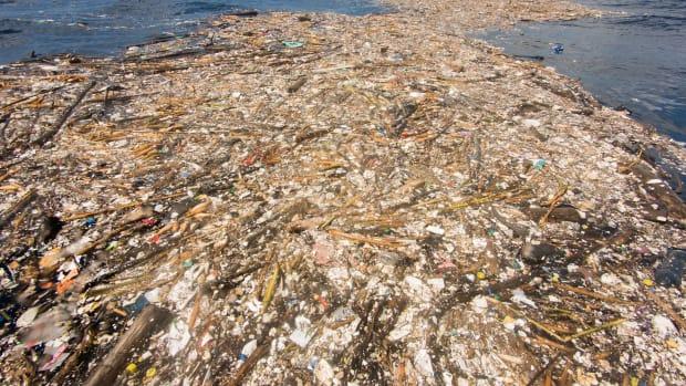 Honduras Trash Island