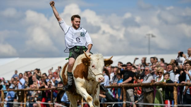 Alex Hintermair clings to his ox Maxl during a race on Ascension in Bavaria on May 10th, 2018, in Taufkirchen, Germany. Ox racing is a sport in Bavaria, though when a Taufkirchen fraternity sought to hold an ox race to celebrate its 125th anniversary the organizers could not find enough male oxen trained for racing, so they broadened the race parameters to include camels. Eight oxen and four camels took part in the 100-meter-long race in a combination of animals that is reportedly a first in Bavarian history.