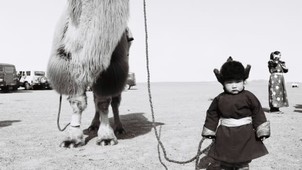 A Mongolian boy with a Bactrian camel, the two-humped animal that lives in Central and East Asia and is shaggier than its desert-dwelling, single-humped counterpart.
