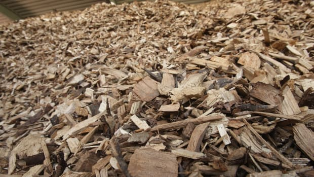 Dried wood chips lie in a pile at a local bioenergy plant.