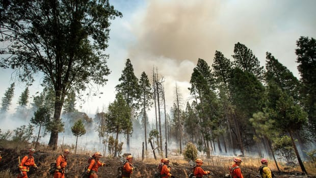 Inmate firefighters battle the Ferguson fire in Jerseydale, California, on July 22nd, 2018. A fire that claimed the life of one firefighter and injured two others near California's Yosemite National Park has almost doubled in size in three days, authorities said Friday. The U.S. Department of Agriculture said the so-called Ferguson fire had spread to an area of 22,892 acres, and was so far only 7 percent contained.