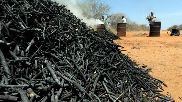 A man makes charcoal from twigs pruned from local forest during a controlled charcoal-making exercise.
