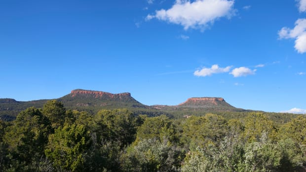 The two bluffs known as the Bears Ears stand off in the distance in Bears Ears National Monument.