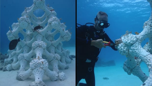 Left: Reef Design Lab's newest Modular Artificial Reef Structure in the Maldives stands 8.2 feet tall with a 13-square-foot footprint. Right: 3-D printing reefs allows researchers to experiment with restoration methods, such as how coral fragments are attached to reefs (here, using zip ties).