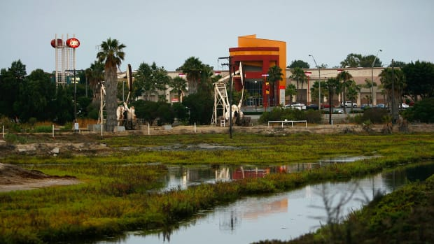 The Los Cerritos Wetlands.