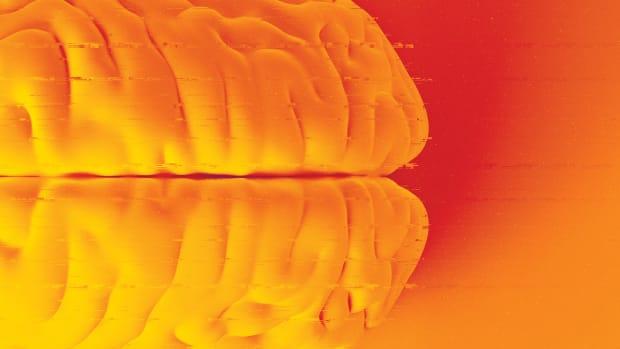 features-brain-01
