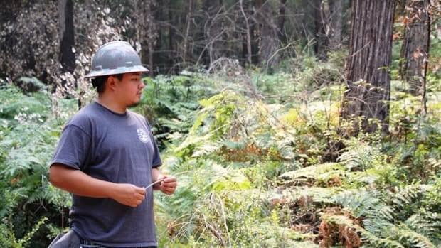 As a summer intern on the Six Rivers Forest, Jonathan White, a student at Salish-Kootenai College in Montana, helped to monitor how plants return to this area, burned in 2016 as a Forest Service and Karuk Tribe research plot.