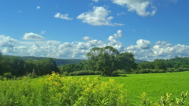 A view of the Harlem Valley from the Appalachian Trail in Pawling, New York.