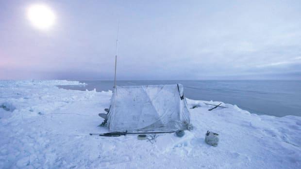 FISH-160418-BARROW-0959