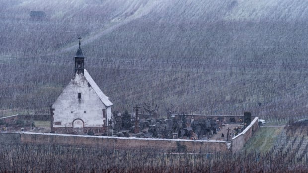 Snow covers the Saint Denis chapel and the vineyards in the village of Wolxheim, eastern France.