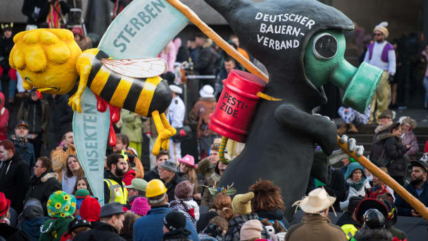 An anti-pesticide float is seen prior to the annual Rose Monday parade on February 12th, 2018, in Düsseldorf, Germany. Political satire is a cornerstone of the annual parade.