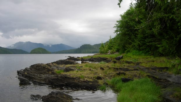 Southeast Alaska's Tongass National Forest is the largest national forest in the United States.