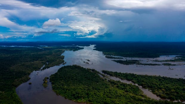 Aerial view of the Iriri River on Arara Indigenous land, in the Amazon, on March 15th, 2019.
