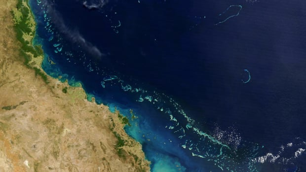 The Great Barrier Reef seen from a NASA satellite on August 6th, 2004.