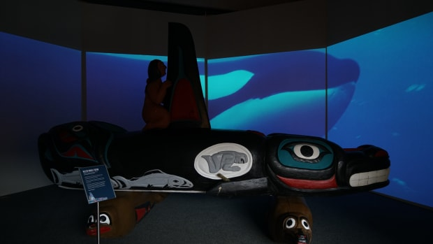 The House of Tears Carvers of the Lummi Nation and The Natural History Museum, Whale People Protectors of the Sea, exhibition at Florida Museum of Natural History, Gainesville, Florida, 2018.