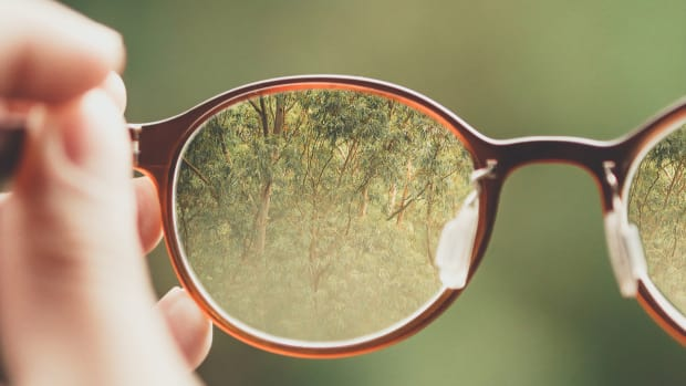 Glasses lenses nature