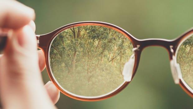 Glasses lenses nature