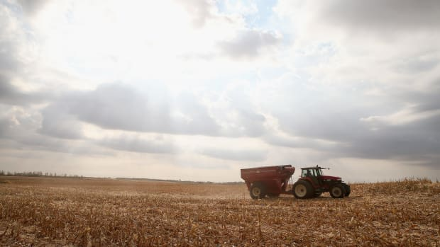 Dave Fendrich helps Bryant Hofer harvest a field of corn on October 2nd, 2013, near Salem, South Dakota.