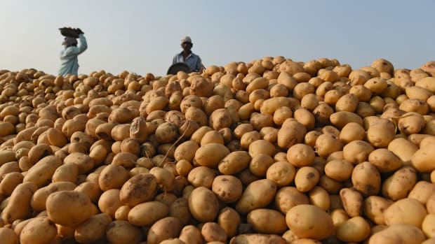 PepsiCo contracts more than 24,000 farmers to grow potatoes and rice for its chips.
