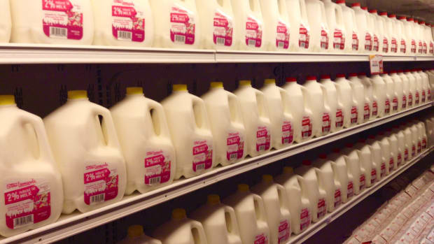 Gallons of milk on shelves in a grocery store
