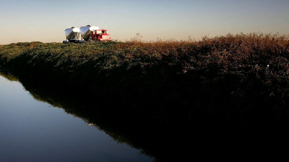 Can Anyone Clean Up California's Selenium-Contaminated Farm Runoff?