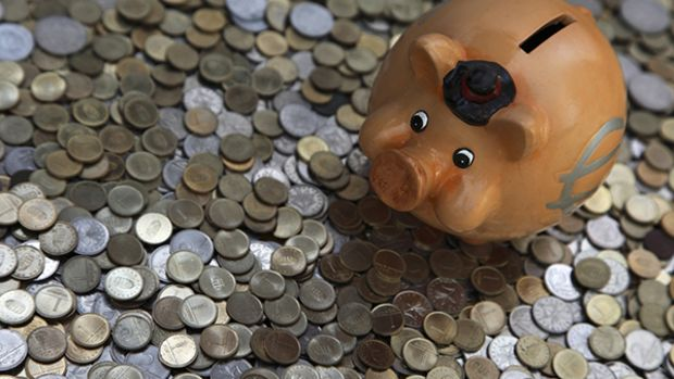 payday-loan-pig