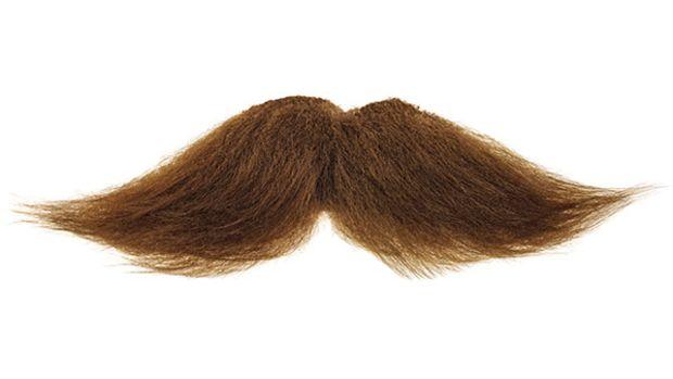 disembodied-mustache