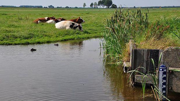 netherlands-water
