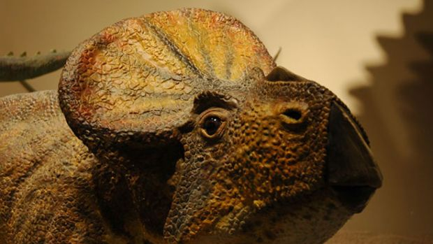 creation-museum-dinosaur