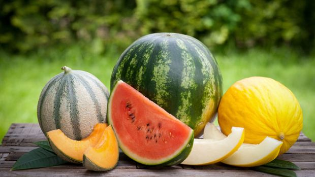 fresh-melons