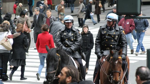 Mounted Cops.jpg