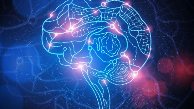 frontiers psychology brains
