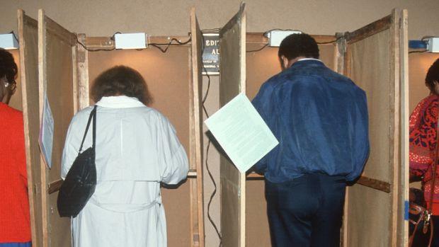 minority-voting.jpg