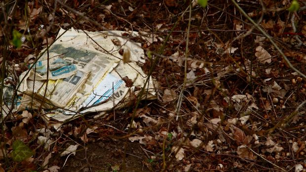 Rotting newspaper