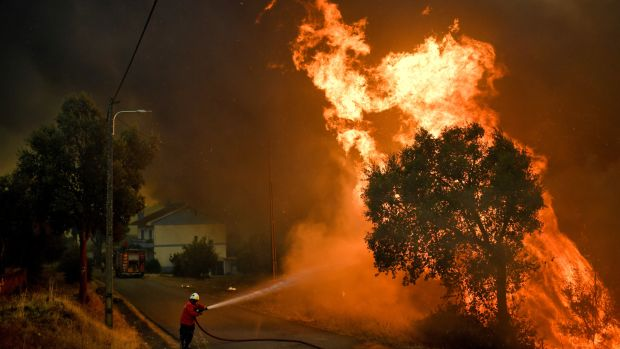 A firefighter tackles a wildfire close to the village of Pucarica in Abrantes on August 10th, 2017. Nearly 3,000 firefighters battled 80 wildfires raging across Portugal civil protection officials said, as the return of scorching heat put an end to the respite after a spate of blazes. Some 650 firefighters backed by nine water-dropping aircraft and over 200 vehicles were at the scene of the biggest blaze in a forest near the central town of Abrantes.
