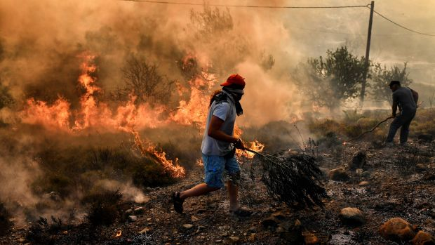 A man runs away from flames as fire burns the land, east of the Greek capital of Athens on August 15th, 2017. The army was called in to assist firefighters around Kalamos, 30 miles east of Athens, where a fire has been burning since August 13th. In all, 146 fires have broken out across Greece since then, according to authorities.