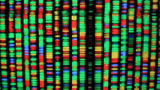 A digital representation of the human genome.